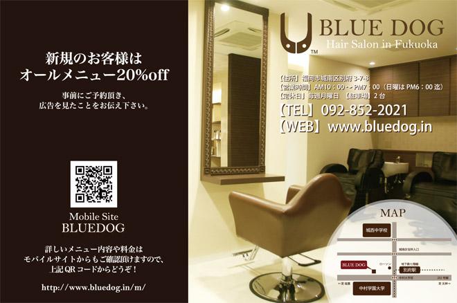BLUEDOG/ブルードッグ 10'チラシ