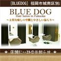 BLUEDOG/ブルードッグ 携帯サイト